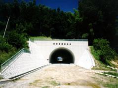 国道153号 雲雀沢トンネル